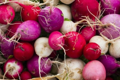 how-to-grow-radishes