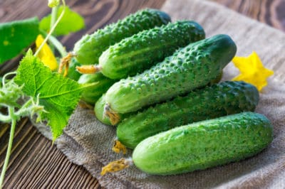 knowing-pick-cucumbers