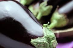 preserving-eggplant