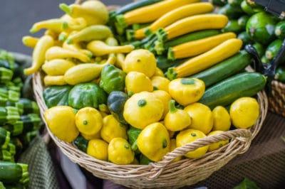 title-best-harvest-time-summer-winter-squash