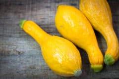 title-short-term-storage-yellow-squash