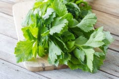 what-to-do-with-celery-leaves