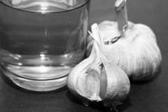 grow-garlic-water