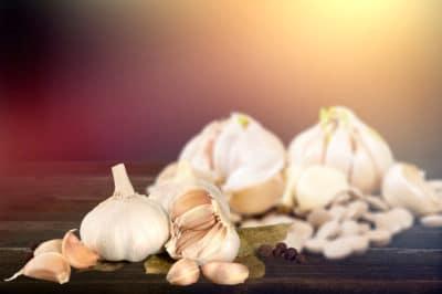 how-to-regrow-garlic