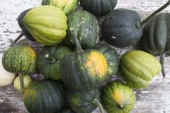 pick-acorn-squash