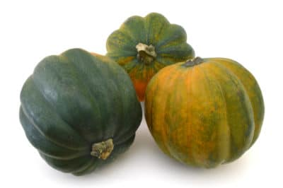 store-acorn-squash