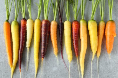 where-are-carrots-grown