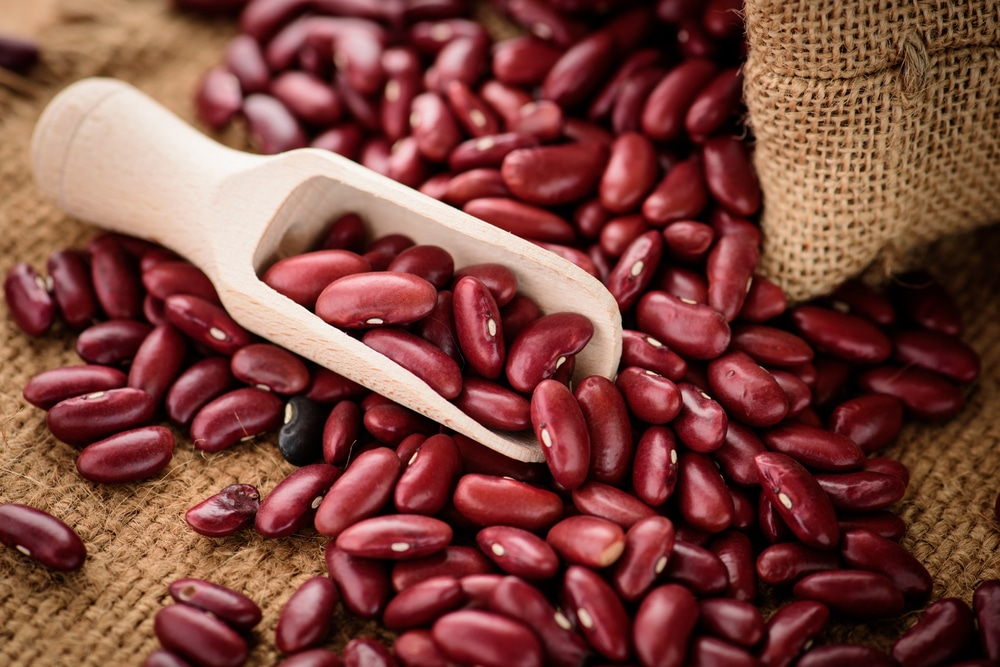 Growing Kidney Beans Like A Master Gardener