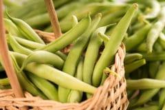 pick-green-beans