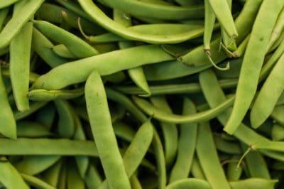 string-green-beans