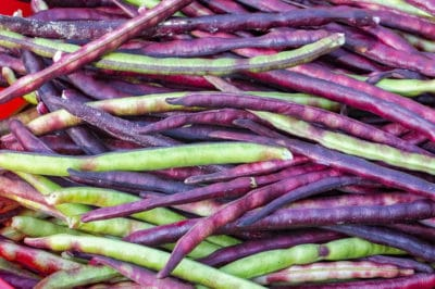 when-to-plant-purple-hull-peas