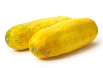 yellow-cucumber