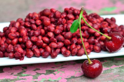 can-you-plant-cherry-pits