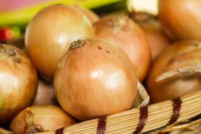 how-to-grow-yellow-onions