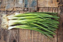 onion-stalk
