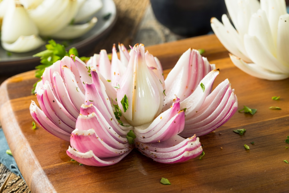 Red onion plant flower