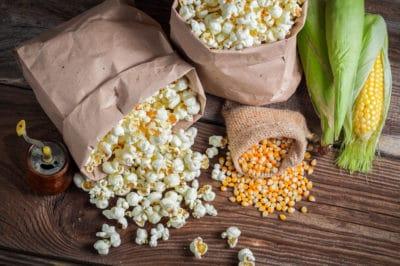 growing-popcorn