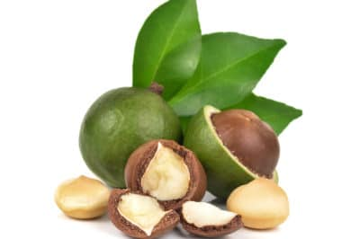 how-do-macadamia-nuts-grow
