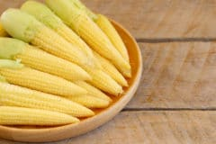 how-to-grow-baby-corn