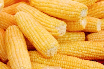 storing-corn