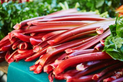 when-is-rhubarb-ready-to-pick
