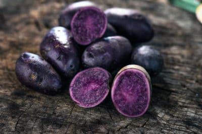 growing-purple-potatoes