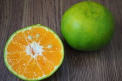 green-oranges