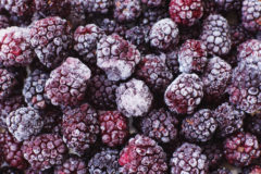freezing-blackberries