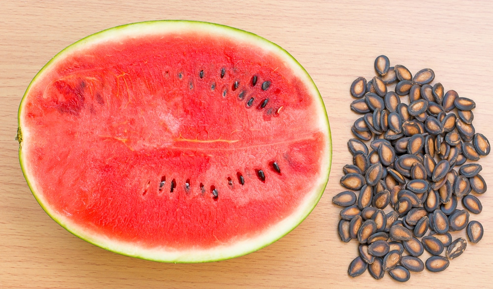 How To Save Watermelon Seeds Top Tips