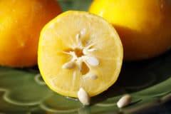 meyer-lemon-vs-lemon